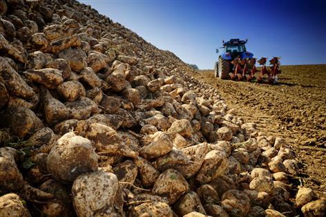NFU Sugar organises emergency meeting for M&J Haulage Ltd growers