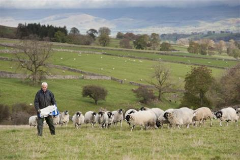 Groups say 'harmful' concentration of farm ownership needs to be challenged