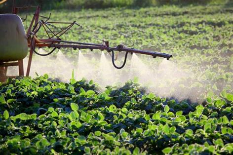 UK exit from EU agency responsible for managing pesticides a 'massive issue'