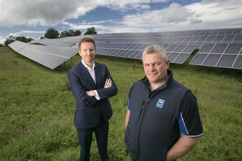 UK dairy cooperative launches largest 'self-consumption' solar farm in Ireland
