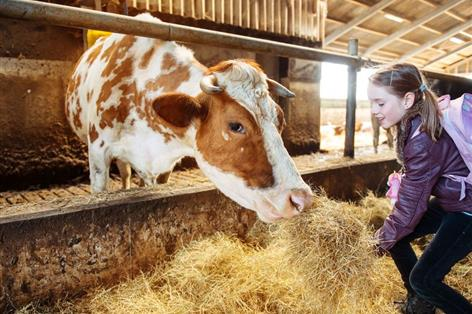 Half of Brits cannot remember last time they visited a farm, survey shows