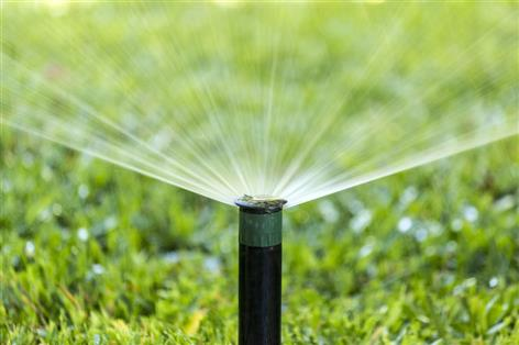 Water restrictions 'likely' in spring if winter rainfall below average