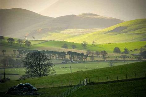 Scottish Land Commissioner criticises Buccleuch over tenant row