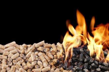 VG Biomass Company Brochure