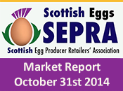 SEPRA Market Report - 31st October 2014