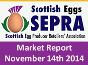 SEPRA Market Report - 14th November 2014