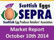SEPRA Market Report - 10th October 2014