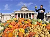 Quantification of food surplus, waste an...