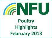 NFU Poultry Highlights 1st February 2013