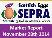 SEPRA Market Report - 28th November 2014