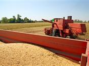 New Crop Corn: Conditions Go From Bad To...