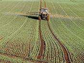 Market Survey - UK Agricultural Land 2015