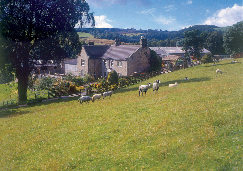 Scaife Hall Farm