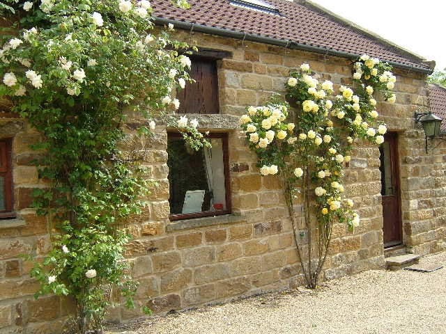 Browdale Cottage at Thorney Brow Farm