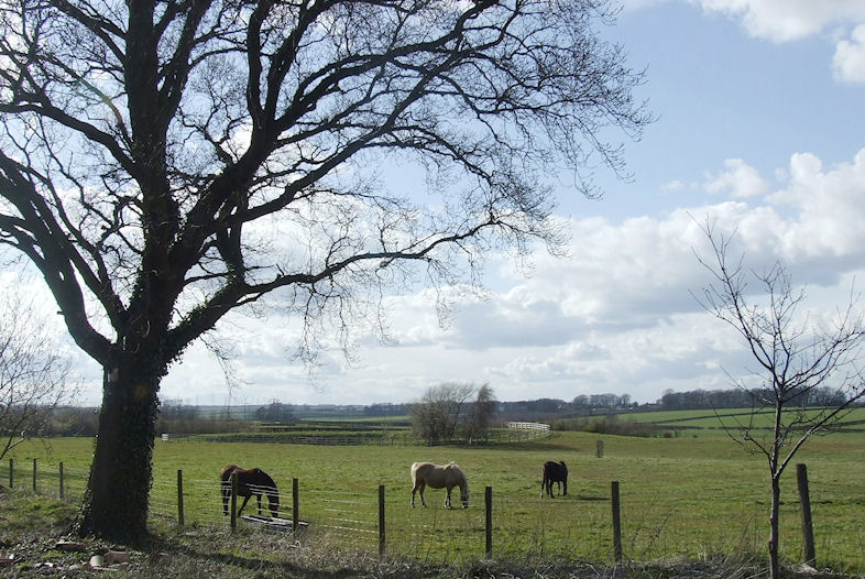 Broadgate Farm Cottages_4