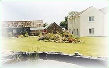 Headland Farm