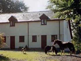 Bryngwenyn Farm