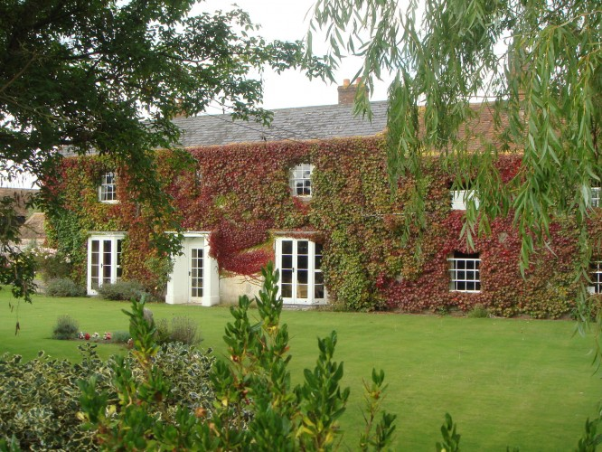White Pond Farm_1