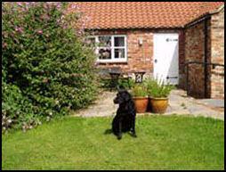 Lund Farm Cottage_2