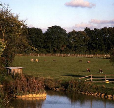 Damerons Farm Holidays