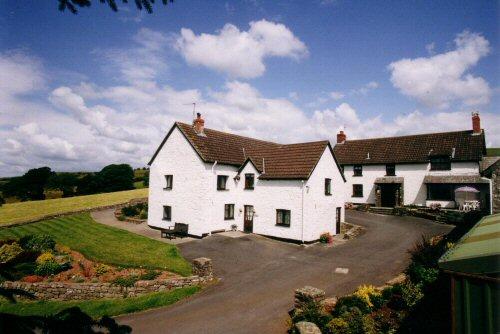 Bryn Y Fedwen Farm