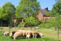 The Coach House Farm