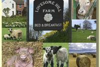 Lovesome Hill Farm