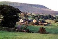 Higher Gills Farm