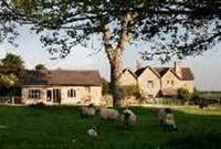 Potters Hill Farm