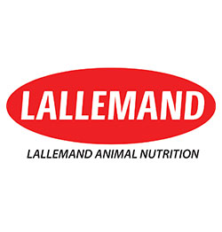 Lallemand Animal Nutrition UK Ltd