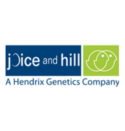 Joice and Hill Poultry Ltd