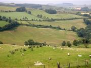 Wales Rural Development Programme 'must deliver' for rural Wales, the NFU Cymru has said