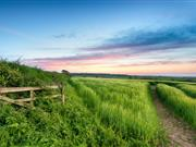 Countryside Stewardship provides financial incentives for land managers to look after their environment