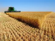 """""""Precision agriculture can help increase yields, reduce costs or do both at the same time"""""""