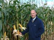 Wynnstay Group is the third largest producer of cereal seed in the UK (Photo: Dr Simon Pope)