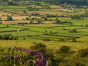 The organisations are emphasising the need for a countryside for food, wildlife and people