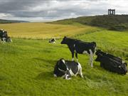 New international action plan to boost exports of UK food and drink announced