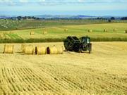 A harvester on a Scottish barley field