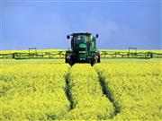The survey says establishing oilseed rape crops this autumn has been challenging