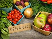 Today's informed consumers in Western Europe and the US are demonstrating an increasing appetite to buy organic food