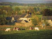 Chancellor Hammond urged to use fiscal levers to achieve longer term farm tenancies