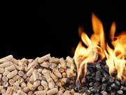 'Shameful': Ulster farm group 'disappointed' at RHI list publication