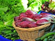 Local community farming and food project to be launched in Wales