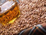 Growers to meet better malting specifications leading to more efficient whisky production