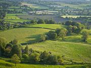 1 in 7 Brits have not visited the countryside for two or more years