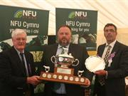 Idris Davies Memorial Award 2017 winner announced