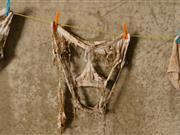 'Soiled undies' reveal hidden world of soil on family's farm