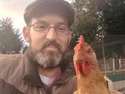Fundraising site started to help farmer who lost his hens to fox