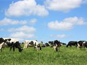 Farmers told to 'Tell it Like it is' in new dairy promotion campaign