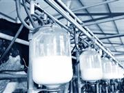 Growth in dairy: World to consume extra 304m tonnes of milk by 2030